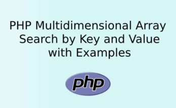 PHP Multidimensional Array Search by Key and Value with Examples